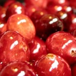 Du cranberry pour les troubles urinaires