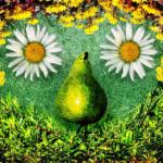 Soigner l'acné avec les plantes