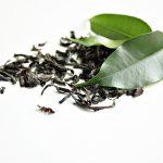 Remèdes contre la fatigue par phytothérapie